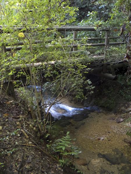 北回りルートの渓流
