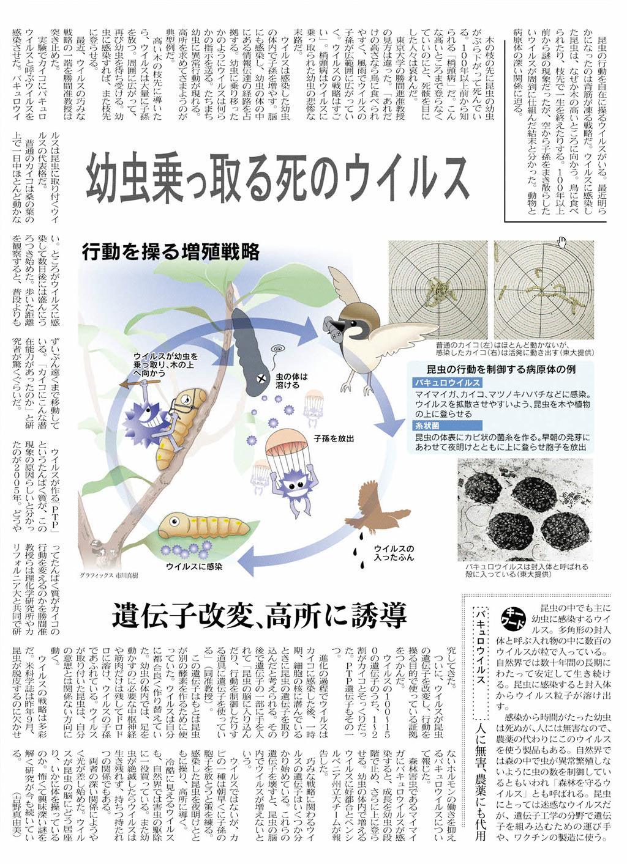 日経新聞 2012.6.17